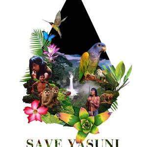 SAVE YASUNI