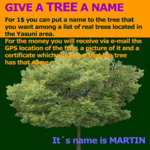 Give a tree a name