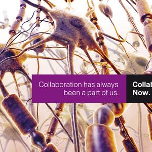 Cisco Collaboration Campaign Nerves