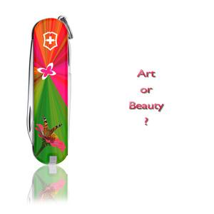 Art or Beauty?