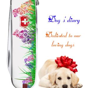 Dog's diary