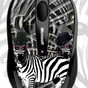 mad zebra