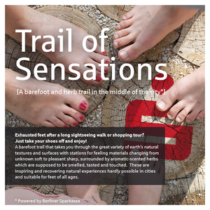 Trail of Sensations