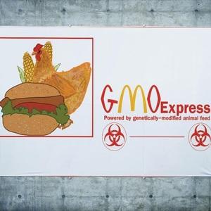 GMOexpress2