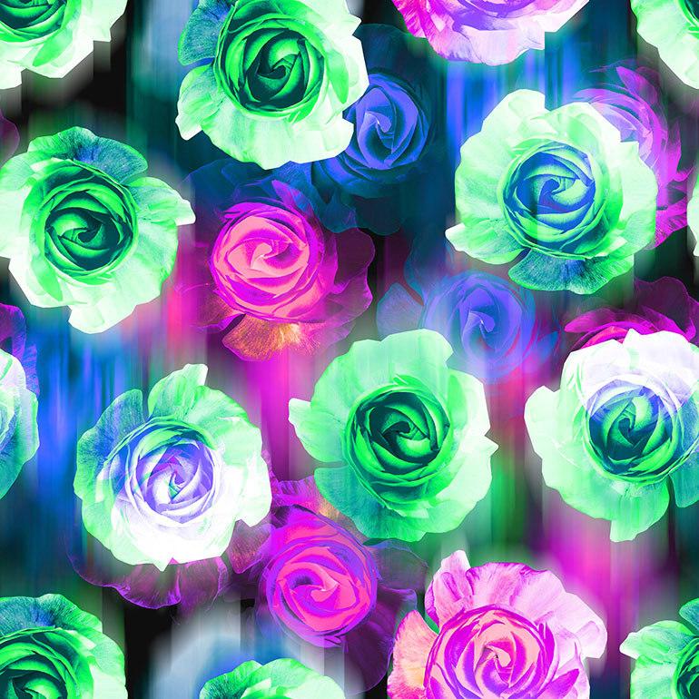 Roses bigger