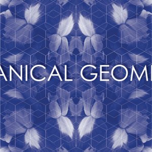 Botanical Geometry
