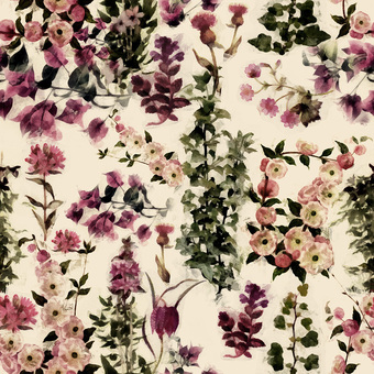 Florales4c width340