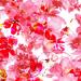 flower glass