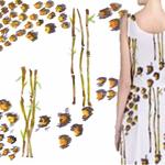 Bao  Bamboo