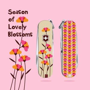 Season of Lovely Blossomsssss :)