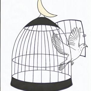 Be free to leave your cage behind