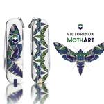 MothArt