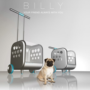 Billy (update)