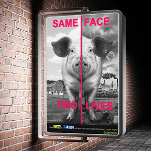 Same Face - Two Lives